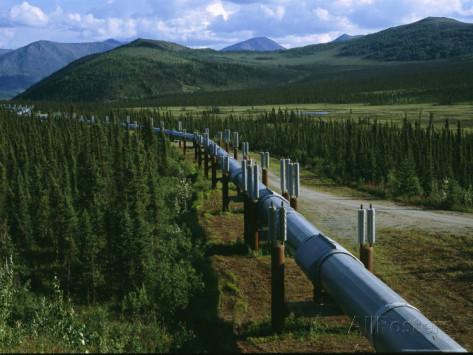 melissa-farlow-l-oleodotto-trans-alaska-attraversa-la-natura-selvaggia