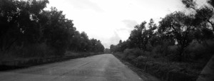 001# Strada Delianuova